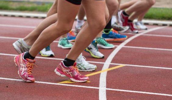 Sport i kibicowanie